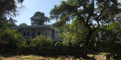 Chanote Land for Sale in the Nai Harn/Rawai Area - 4 min to Nai Harn Beach